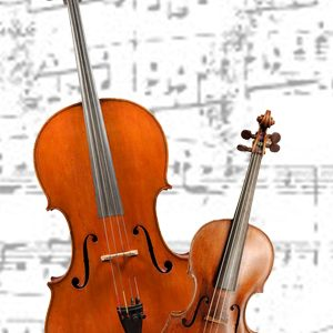 wedding-music-band-italy-violin-cello